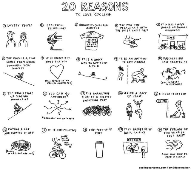 20 reasons...